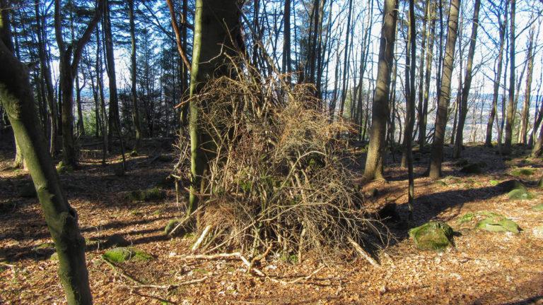 Eine schnelle Variante, sich ein Shelter zu bauen. Foto Chris Bergau/bergau-media.com