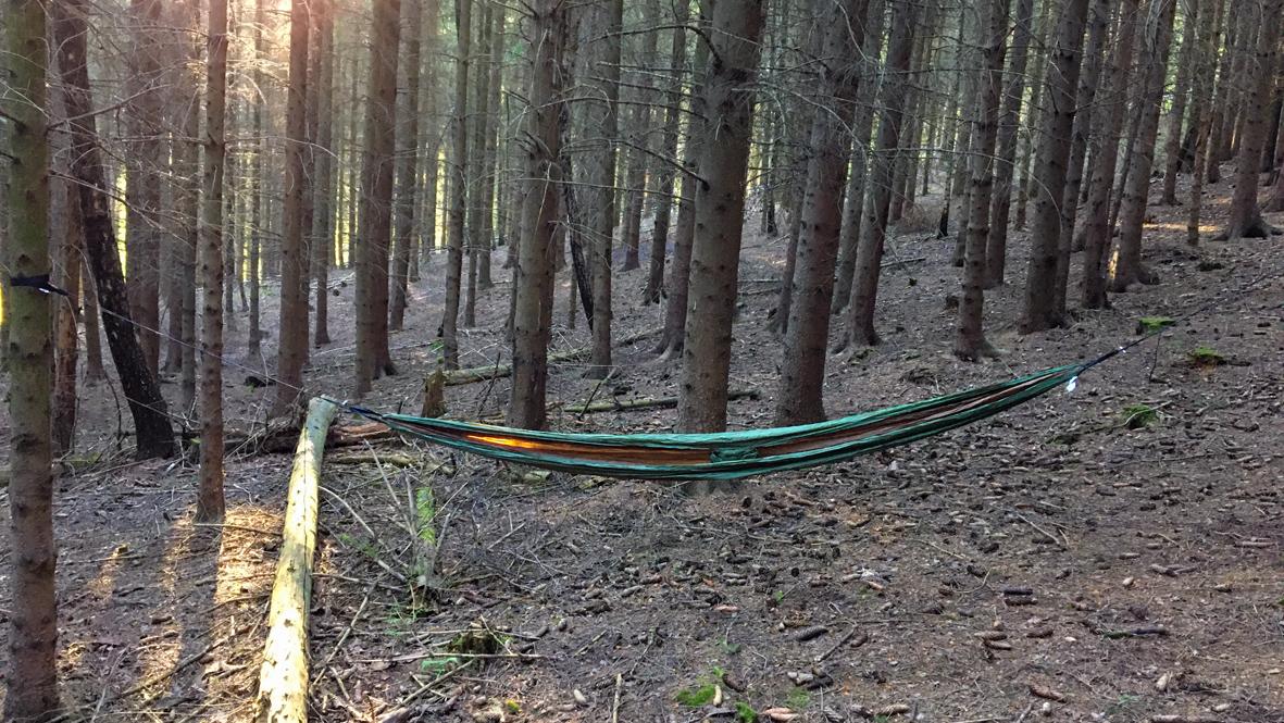 Mit der Hängematte im Wald/ With the hammock in the forest. Foto: Chris Bergau/bergau-media.com